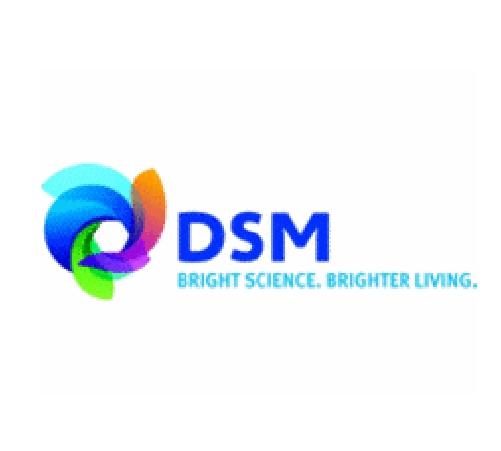 Dsm 01